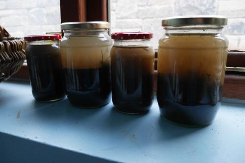 settling soil samples