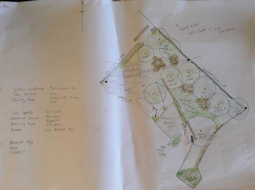 Forest Garden Plan